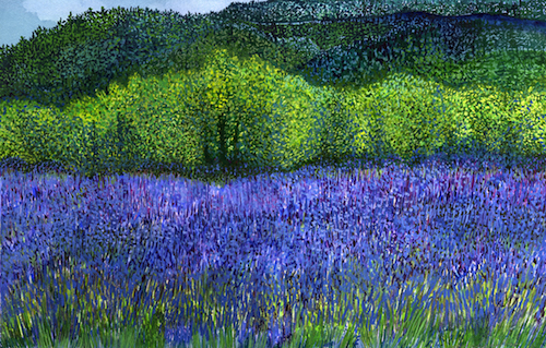 McKenzie River Lavender Farm: watercolor painting (2015) by Joann Carrabbio