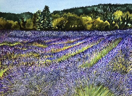 McKenzie River Lavender #2: watercolor painting (2020) by Joann Carrabbio