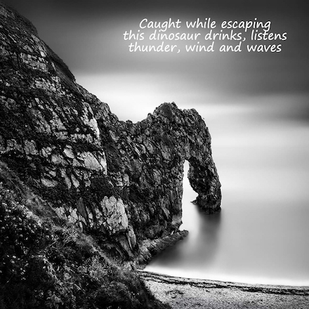 Caught while escaping, with poem by Gary S. Rosin and photo by George Digalakis
