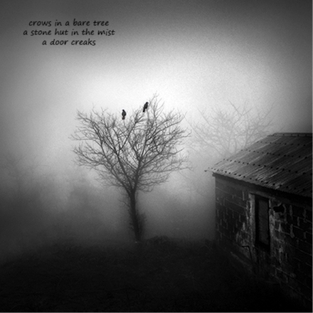 Untitled Haiga [crows]: poem by Gary S. Rosin and photo by George Digalakis