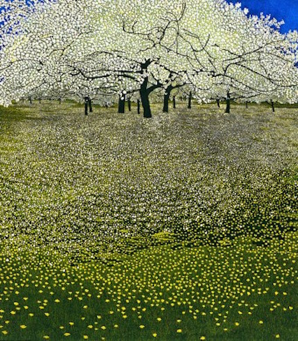 Blossom, etching and aquatint by Phil Greenwood
