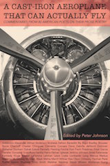 Cover of A Cast-Iron Aeroplane That Can Actually Fly, by Peter Johnson