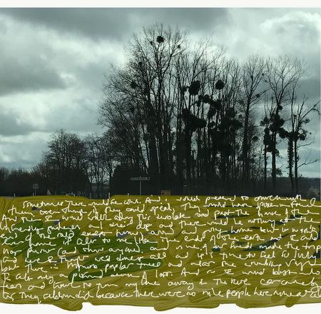 les Peupleraies, digital art (photo and asemic writing) by Ann Knickerbocker