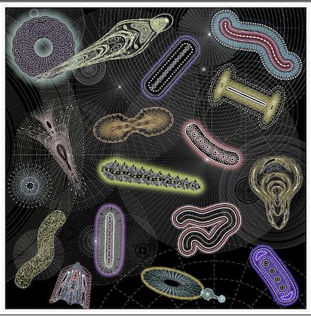 Pleiomorphic, 2010 digital pigment print by Mark Meyer