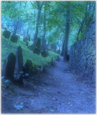 Untitled photograph of graveyard in Czechia by Vladimir Mokry (2 Sept. 2014)