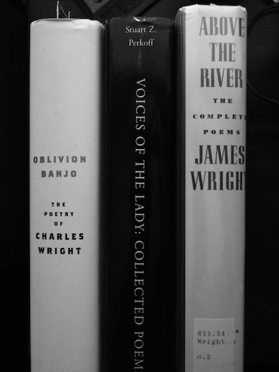 Oblivion Banjo: Book-spine poem and photo by Jonathan Yungkans