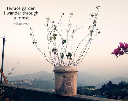 Terrace Garden: haiga (haiku, photo, and pencil and chalk art) by William Zote